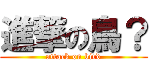進撃の鳥? (attack on bird)
